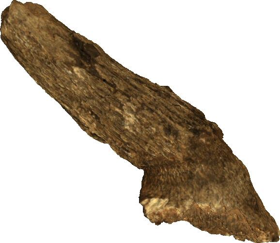 Horn core