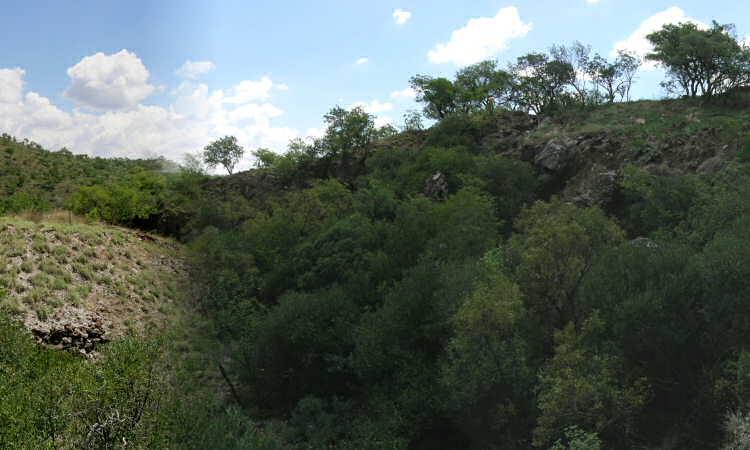 Gondolin Site