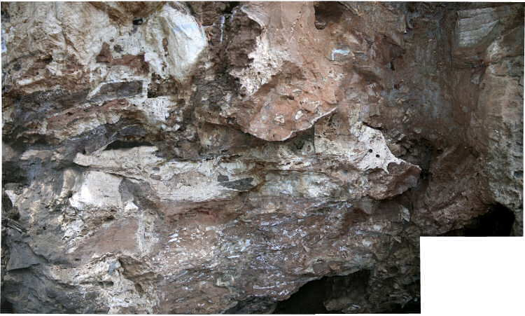 The remaining in situ GD 2 fossil deposits sampled by E.S. Vrba and David Panagos in the late 1970s. The preserved fossils (white) within the red siltstones are incredibly dense, representing one of the richest early Pleistocene fossil assemblages in the northern Cradle region.