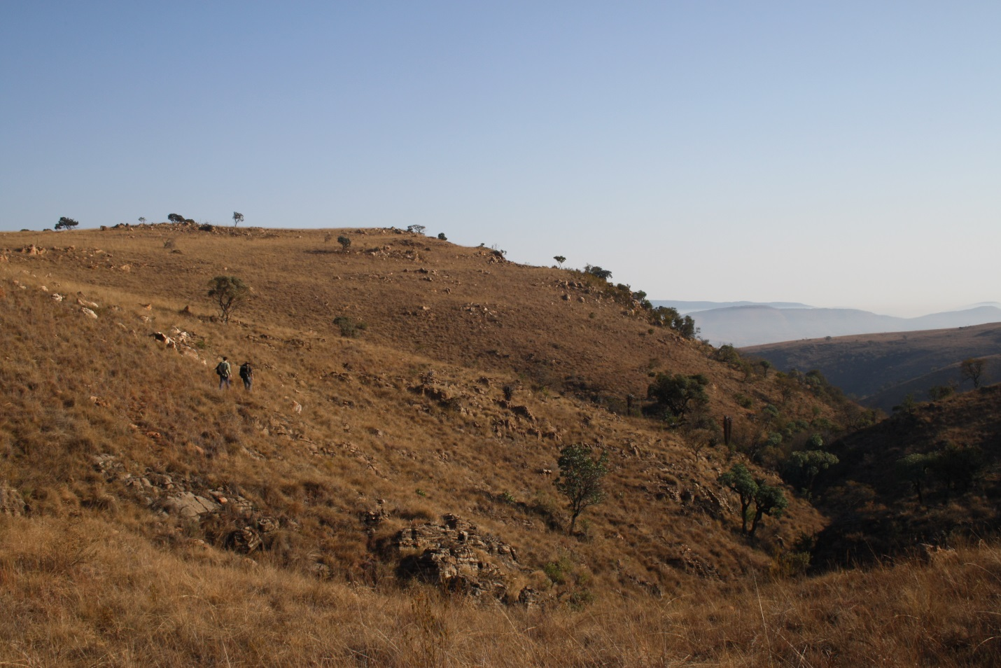 The landscape of northern Cradle south of Haasgat (Photo courtesy of Angela Olah)