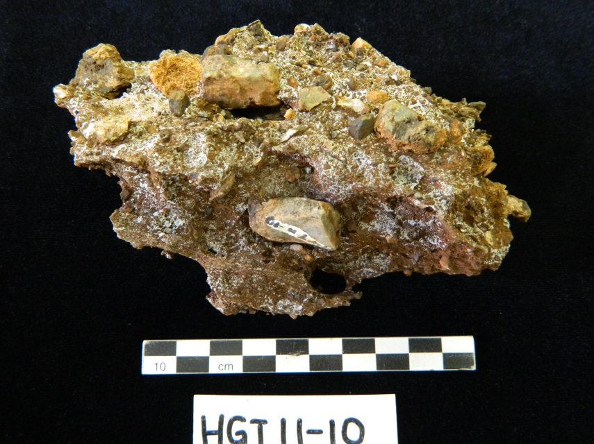 A calcified sediment block from Haasgat being processed at the Ditsong National Museum of Natural History in Pretoria